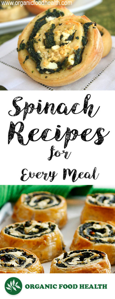 Organic Spinach Recipes for Every Meal